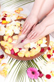 Pedicure and manicure spa with petals and flowers Royalty Free Stock Photo