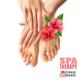 Pedicure Manicure Spa Salon Poster. Pedicure and manicure spa therapy salon poster with pink flowers female feet and hands on white background realistic vector stock illustration