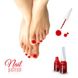 Pedicure Nail Polish. Pedicure red nail polish and female feet  on white background realistic vector illustration Royalty Free Stock Images