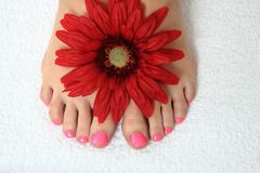 Pedicure nails, feet and flowers Royalty Free Stock Photos