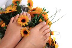 Pedicure nails, feet and flowers Royalty Free Stock Photography