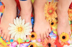 Pedicure nails, feet and flowers Stock Photography
