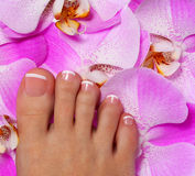 Pedicure with pink orchid flower. Beautiful female foot Royalty Free Stock Photos