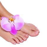 Pedicure with pink orchid flower isolated on white Royalty Free Stock Photography
