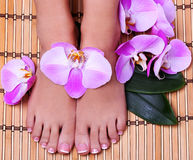 Pedicure with pink orchid flowers Royalty Free Stock Photos