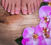 Pedicure with pink orchid flowers on wooden background Royalty Free Stock Image