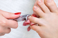 Pedicure procedure, cutting toenails Stock Photos