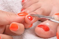 Pedicure process macro closeup Stock Image