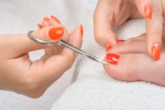 Pedicure process macro closeup Stock Photo