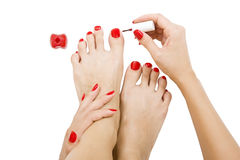 Pedicure process - red manicure and pedicure, isolated Stock Images