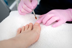 Pedicure in progress. A salon specialist makes pedicure for a young woman Stock Photography