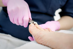 Pedicure in progress. A salon specialist makes pedicure for a young woman Stock Images