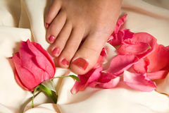 Pedicure with rose royalty free stock photos
