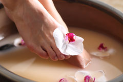 Pedicure, soaking feet Stock Photography