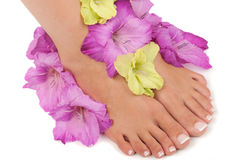 Pedicure Spa Stock Images