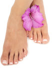 Pedicure Spa Royalty Free Stock Images