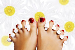 Pedicure in the spa salon. Daisy background Stock Photography