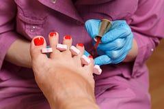 Pedicure Spa salon. Covering nail varnish. Stock Photo