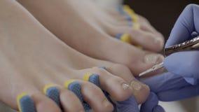 Pedicure'u mistrz stosuje solankowego colour lakier żeńscy klientów gwoździe w barze zbiory