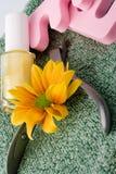 Pedicure'u piękna set i kwiat Zdjęcia Royalty Free