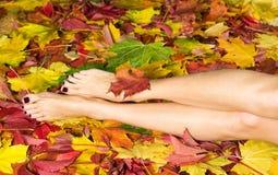 Pedicure und Herbstblätter Stockbild