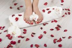 Pedicure vermelho do gel bonito com orquídea e pétalas ao redor na toalha branca Imagem de Stock