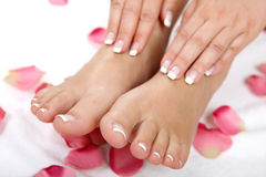 Pedicure and wellness theme Stock Images