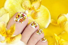 Pedicure with yellow orchids. Pedicure with yellow orchids in the women's legs on a yellow background royalty free stock photo