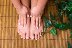Pedicured feet Royalty Free Stock Photos