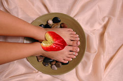 Pedicured Feet. A pair of pedicured feet on silk cloth Stock Photography