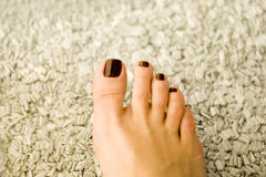 Pedicured toe nails Royalty Free Stock Photo