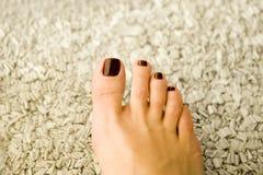 Pedicured toe nails Royalty Free Stock Photo