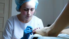 Pedicurist女孩轻轻地应用在趾甲的透明固定的胶凝体擦亮剂 库存图片