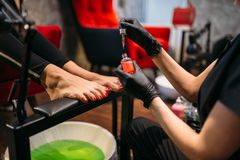 Pedicurist doing cosmetic procedure, female client royalty free stock images
