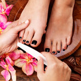 Pedicurist master makes pedicure on woman's legs Stock Images