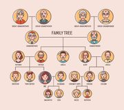 Pedigree or ancestry chart template with portraits of men and women in round frames. Visualization of links between