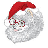 Pedigree dogs are drawn by hand. Spitz . Puppy in a Christmas hat . Royalty Free Stock Image