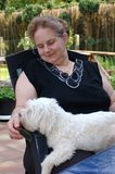 Pedigree Puppy on lap. Woman having her dog, a pedigree maltese puppy on her lap Stock Photography