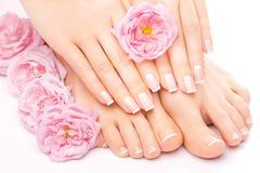 Pedikyren och manikyr med en rosa färgros blommar Arkivbilder