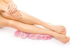 Pedikyren och manikyr med en rosa färgros blommar Royaltyfria Foton