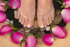 Pedispa. Being pampered by beautiful aromatic pink roses and therapeutic mineral water bath Royalty Free Stock Image
