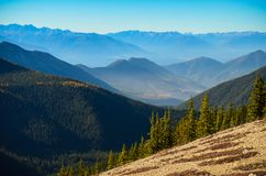 Pedley Pass hike near Invermere BC in Autumn Royalty Free Stock Image