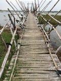 Pedone e ponte di bambù di moto immagine stock