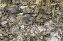 A pedra áspera velha Imagem de Stock