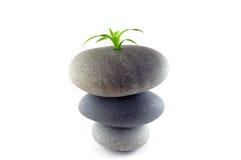 Pedra Fotografia de Stock Royalty Free