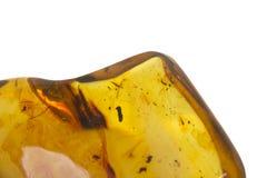 Pedra ambarina Báltico com inclusões Fotografia de Stock