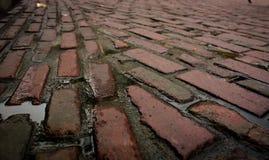 Pedra após a chuva Foto de Stock