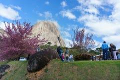 Pedra Azul Imagens de Stock