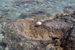 Pedra branca pelo mar imagem de stock