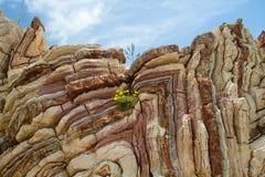 Pedra calcária dobrada Fotografia de Stock